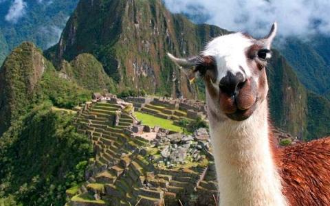 PERU PROMOCIONAL